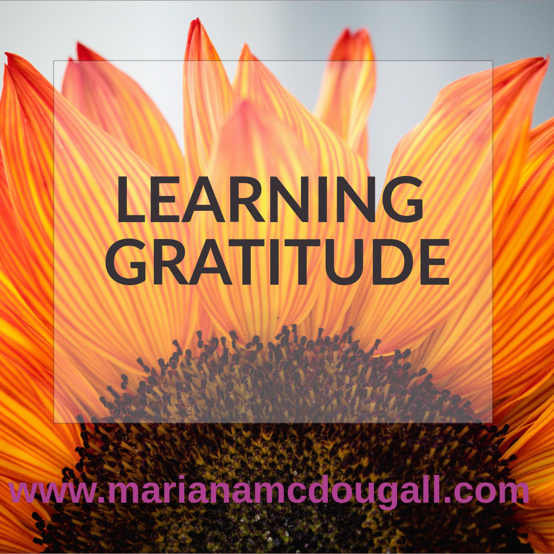 Learning Gratitude
