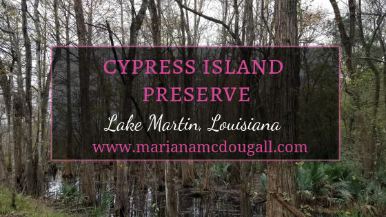 Cypress Island Nature Reserve, Lake Martin, Louisiana