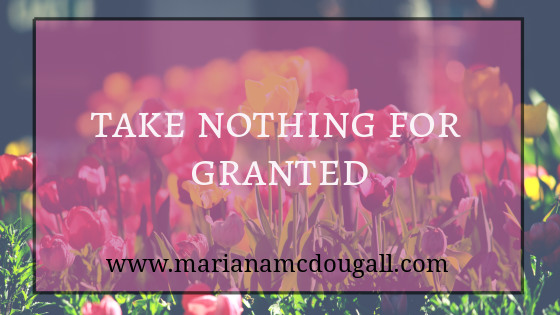 Take Nothing for Granted, www.marianamcdougall.com, multi-coloured tulips