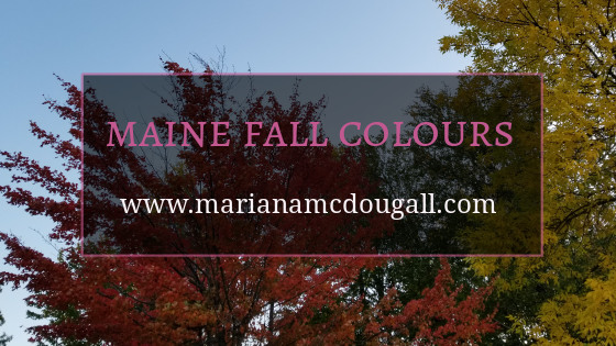 Finding Inspiration in the Colours of Maine