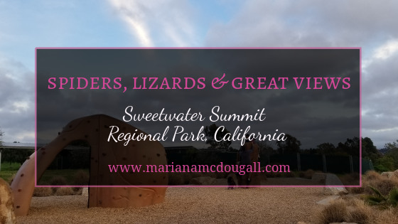 Spiders, Lizards, and Great Views: Sweetwater Summit Regional Park, California. www.marianamcdougall.com. Photo of playground.