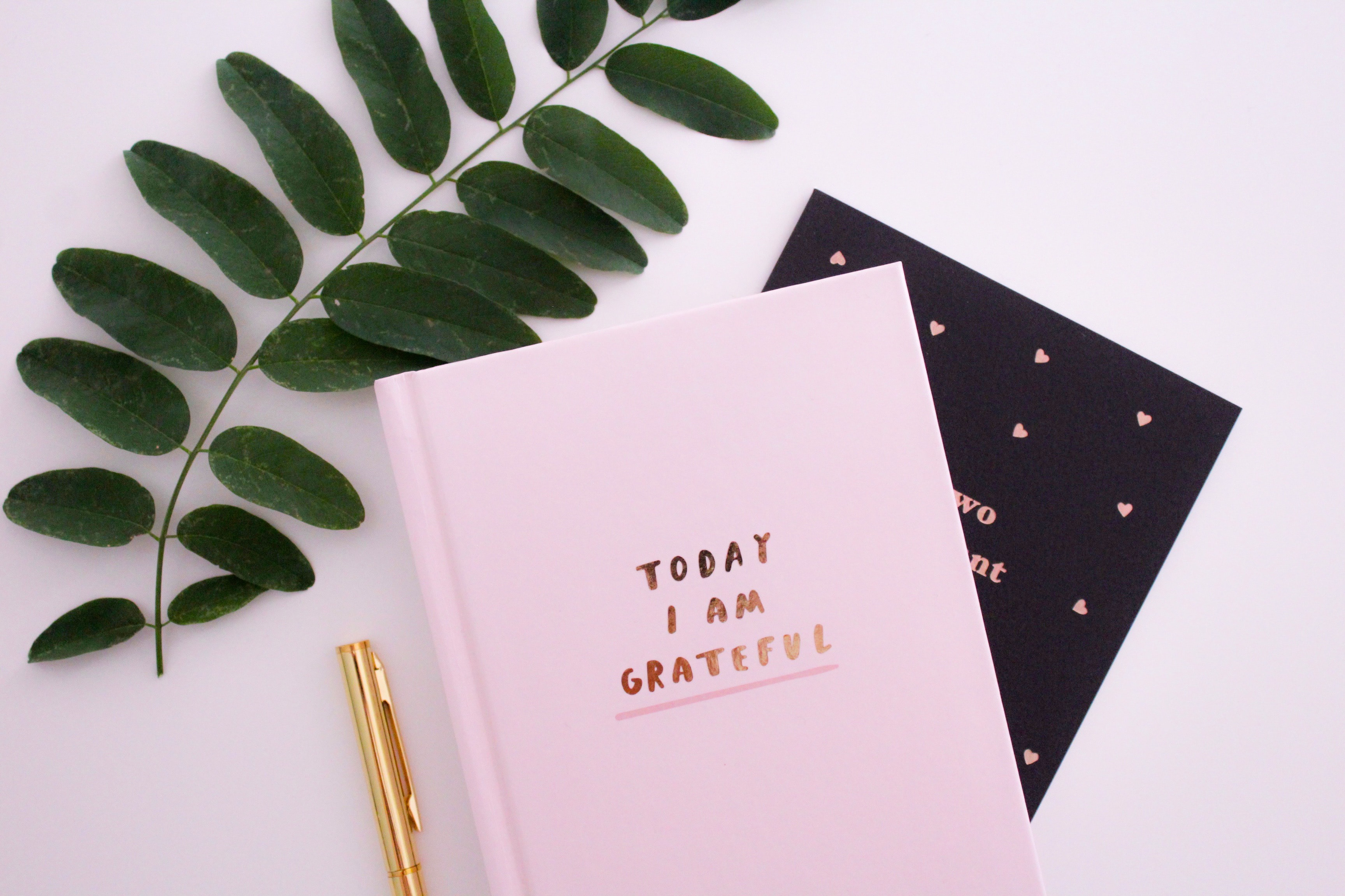 "Two notebooks, a pen, and a leaf on a table. The cover of the top notebook says ""today I am grateful."" I will be writing a ""week in review post"" each Sunday, where I review both what I'm grateful for as well as the books we've read this week. Photo by Gabrielle Henderson on Unsplash"